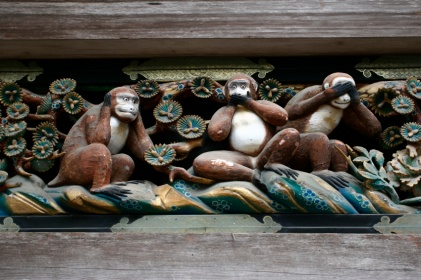 scimmie5380