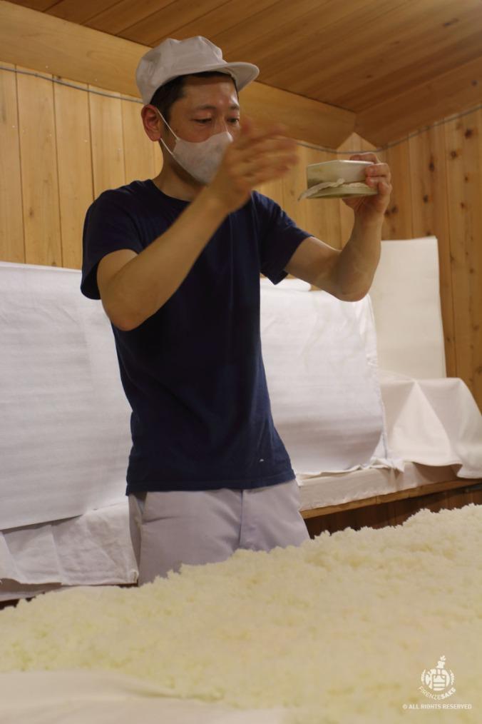 Tokomomi (courtesy f Miyasaka Brewery)